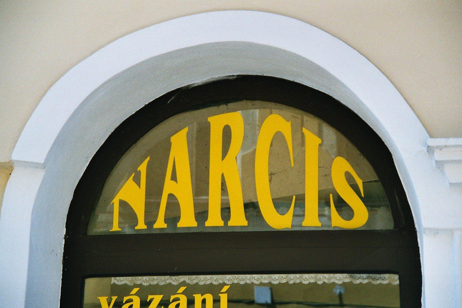 Novy Bor - Narcis